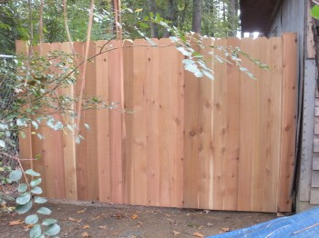 New section of cedar fence
